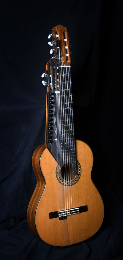 The Raga Guitar